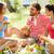 casal · sessão · grama · fruto · cesta · comida - foto stock © pressmaster