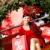 Noel · pazarlık · müşteri · güzel · kadın - stok fotoğraf © pressmaster