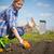 zaaien · tijd · bodem · voorjaar · seizoen · veld - stockfoto © pressmaster