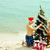 クリスマス · ビーチ · 創造 · スタイル · 夏 - ストックフォト © pressmaster