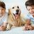 chłopców · psa · portret · szczęśliwy · rodzeństwo · domowych - zdjęcia stock © pressmaster