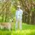 mestre · jogar · cão · pequeno · golden · retriever · gramado - foto stock © pressmaster