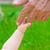 bébé · préhension · doigt · adulte · blanc · noir - photo stock © prg0383