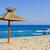 spiaggia · estate · ombrello · cielo · amore · natura - foto d'archivio © prg0383