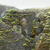 kaya · oluşumu · İzlanda · dağ · manzara · çim · manzara - stok fotoğraf © prill
