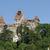 отруби · замок · красивой · дизайна · лет · архитектура - Сток-фото © prill