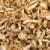 съедобный · грибы · плетеный · корзины · завода · растительное - Сток-фото © prill
