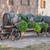 корзины · Франция · завода · Европа · лаванды · улице - Сток-фото © prill