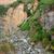 峡谷 · ペルー · 川 · 3番目の · 観光 - ストックフォト © prill