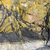 sahil · kaya · oluşumu · Londra · kemer · oluşum - stok fotoğraf © prill