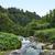 landschap · landschap · eiland · archipel · groep · eilanden - stockfoto © prill