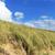 kust · landschap · Nederland · pad · straat · wolk - stockfoto © prill