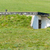 overgrown bunker stock photo © prill