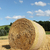 bale of straw in front of blue sky stock photo © pterwort