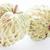 organisch · vruchten · suiker · appel · geïsoleerd · witte - stockfoto © punsayaporn