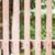 alten · schmutzigen · Holz · Kiefer · Wand · Textur - stock foto © punsayaporn