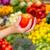 nő · tart · piros · paradicsom · áruház · vásárlás - stock fotó © pxhidalgo