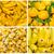 kollázs · friss · zöldségek · étel · narancs · piros · zöldségek - stock fotó © pxhidalgo