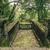 kayıp · şehir · merdiven · taş · orman · Kolombiya - stok fotoğraf © pxhidalgo
