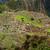 Мачу-Пикчу · Перу · Мир · наследие · здании - Сток-фото © pxhidalgo