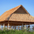 bamboo roof under construction stock photo © pzaxe