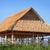 szalmaszál · tető · ház · felső · kék · tiszta · égbolt - stock fotó © pzaxe
