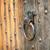 антикварная · шаблон · коричневый · двери - Сток-фото © pzaxe