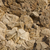 granito · rocas · cubierto · superficie · negro · color - foto stock © pzaxe