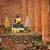 nativo · cultura · thai · stucco · muro · di · pietra · Thailandia - foto d'archivio © pzaxe