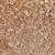 közelkép · öreg · rozsdás · fém · felület · textúra · fal - stock fotó © pzaxe