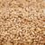 tutto · arachidi · abstract · texture · alimentare · sfondo - foto d'archivio © pzaxe