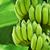 monte · bananas · plantação · tenerife · comida · fruto - foto stock © pzaxe