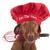 chef · Cook · chien · français · bulldog - photo stock © quasarphoto