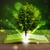 libro · aperto · raggi · luce · legno - foto d'archivio © ra2studio