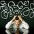 deprimido · empresario · sesión · dirección · líneas - foto stock © ra2studio