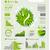ecologia · informações · gráficos · coleção · vetor · elementos - foto stock © radoma