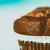 Homemade Chocolate Chip Muffin On Blue Table stock photo © radub85