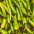 display · alimentare · verde · energia · retro - foto d'archivio © radub85