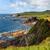ビーチ · 表示 · 西 · 海岸 · アイルランド · 空 - ストックフォト © rafalstachura