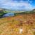 hegyek · északi · Írország · zöld · utazás · állat - stock fotó © rafalstachura