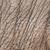 abstract elephant skin texture background stock photo © rafalstachura