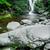 cachoeira · montanhas · sudoeste · Polônia · europa · árvore - foto stock © rafalstachura