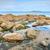 海岸 · アイルランド · 海 · アイルランド · 海岸線 · 表示 - ストックフォト © rafalstachura