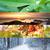 colagem · inverno · paisagem · pôr · do · sol · lago · céu - foto stock © rafalstachura