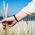 womans hand sliding through dune grass on sunny day stock photo © rafalstachura