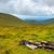 lanscape view over green hills in ring of kerry stock photo © rafalstachura