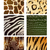 vector animal skins stock photo © ramonakaulitzki
