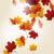sonbahar · sonbahar · yaprakları · güneş · doğa · arka · plan · turuncu - stok fotoğraf © RamonaKaulitzki