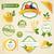 自然食品 · ラベル · セット · オーガニック · ファーム · 生鮮食品 - ストックフォト © ramonakaulitzki