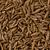 caraway seeds carum carvi stock photo © raptorcaptor